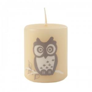 Kerze Happy Owl, Natur, 50-60